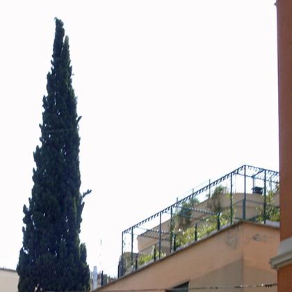 Ich sag's ja - der Römer lebt auf dem Dach!